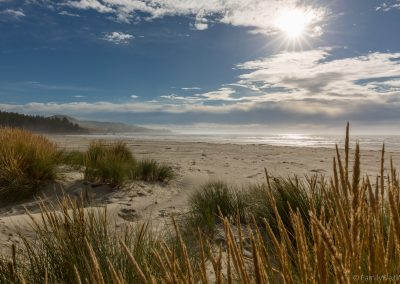 Beach, Warrington, Neuseeland
