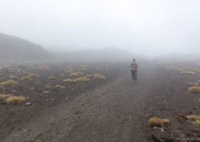 South Crater im Nebel, Tongariro NP, Neuseeland