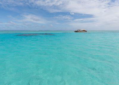 Schnorcheln, Lagoon Cruise , Aitutaki, Cookinseln