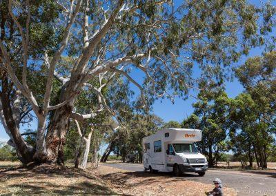 Übernachtung auf kostenlostem Stellplatz, Capel, West-Australie