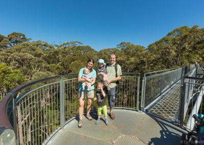 Valley of the Giants, Tree Top Walk, West-Australien