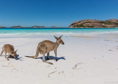 Lucky Beach, Cape Le Grand NP, West-Australien