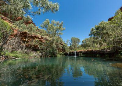 Fern Pool, Dales Gorge, Karijini NP, West-Australien