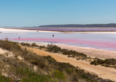 Pink Lake bei Port Gregory, West-Australien