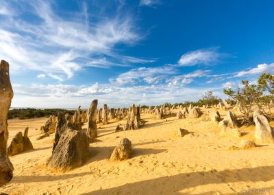 Pinnacles, Nambung NP, West-Australien
